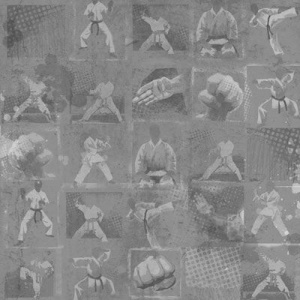 Karate 12'' x 12'' Scrapbook Paper by Karen Foster Design 60831