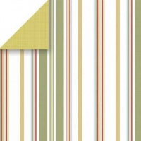 Big Loft Stripe Scrapbook Paper Scrapbook Walls 24410