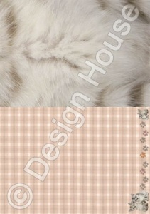 Friends Together - Simply Photogenic Cats - Backing Paper - Design House