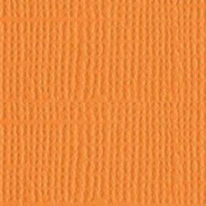 Spiced Marmalade Distressed Core'dinations Cardstock