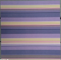 Birthday Stripe Classic Purple 11960
