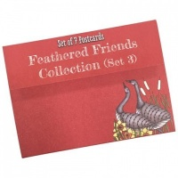 Feathered Friends Postcard Collection Set 3