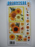 Orange Flowers E-Z Rub-on Transfers