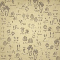 Paw Print Sketches by Karen Foster Design 60957